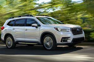 Subaru đổi ôtô mới cho khách, không cần triệu hồi xe