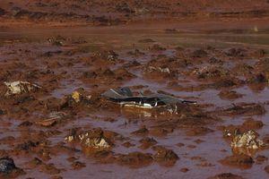 Năm nay, Công ty Samarco của Brazil sẽ chi 512,5 triệu USD cho các nạn nhân thảm họa