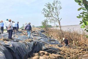 Làm kè chắn sóng khẩn cấp tại bờ biển đông Cà Mau