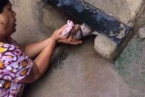 Tưởng mèo kêu dưới rãnh nước, người phụ nữ tiến đến, thấy điều choáng váng...