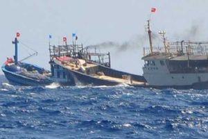 Tàu lạ đâm chìm tàu của ngư dân Bình Định, 6 ngư dân suýt mất mạng