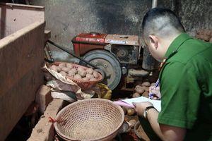 Bắt quả tang cơ sở 'phù phép' khoai tây Trung Quốc thành khoai tây Đà Lạt