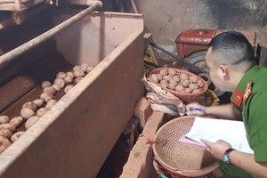 Trộn đất vào khoai tây Trung Quốc giả làm khoai tây Đà Lạt