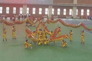 43 đoàn quốc tế tham dự Giải vô địch thế giới Võ cổ truyền Việt Nam