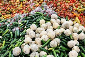 Đến năm 2030, hơn 2 tỷ tấn thực phẩm thừa bị vứt bỏ