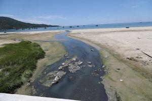 Biển Đà Nẵng bị 'ngộ độc' nước thải thế nào - Kỳ 2