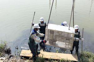Hồ điều hòa 'bức tử' vịnh Hạ Long: Quảng Ninh mời chuyên gia Nhật
