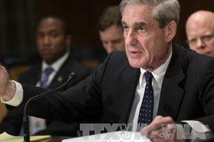 Có gì trong 'bản cáo trạng nói' của công tố viên đặc biệt Mueller?