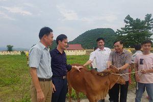 Huyện Thạch Thành (Thanh Hóa): Tập trung các nguồn lực để phát triển kinh tế - xã hội