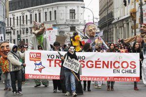 'Lịch sử của Monsanto đầy rẫy những dối trá'