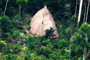 Phát hiện bộ lạc thổ dân sống biệt lập chưa từng được biết tới