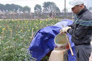 Tỷ lệ sử dụng thuốc bảo vệ thực vật ở Việt Nam còn cao