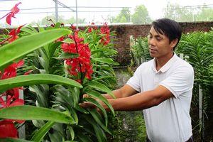 Nông nghiệp công nghệ cao 'khát' vốn