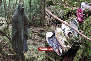 Những bí ẩn rùng rợn ẩn giấu trong 'khu rừng tự sát' nổi tiếng nhất Nhật Bản