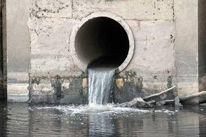 Cà Mau: Bốn doanh nghiệp, cơ sở bị phạt gần 850 triệu đồng do xả thải ra môi trường