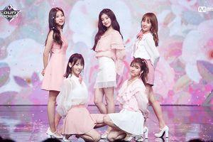 Chung kết Produce 48: Fan 'so găng' chi tiền mua quà siêu khủng để… đua lượt vote cho thí sinh