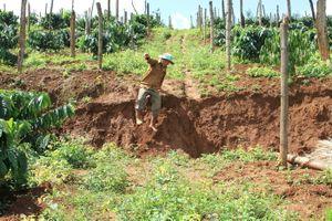 Đắk Nông: Đất nông nghiệp của dân giáp hồ bùn đỏ tiếp tục bị sụt lún