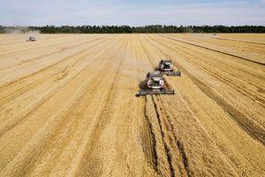 Mỹ ngậm đắng đóng cửa trung tâm nhập lúa mỳ ở Nga