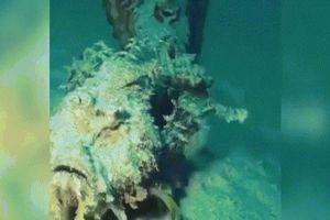 Những quái vật biển sâu kỳ quái nhất trên Trái đất