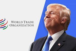 Mỹ rút khỏi WTO: 'Vắng cô thì chợ vẫn đông'