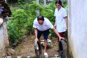 Xuất hiện ổ dịch sốt xuất huyết ở vùng lũ Thanh Hóa