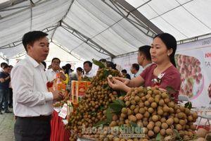 Hưng Yên: Nhiều giải pháp thúc đẩy tiêu thụ sản phẩm nông nghiệp
