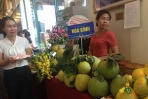 Diễn đàn kinh doanh nông sản, rau an toàn tại Hà Nội
