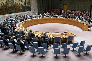 Nga đề nghị Hội đồng Bảo an LHQ họp bất thường về tình hình Syria