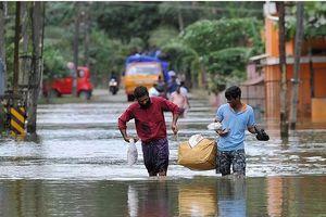 36 người chết ở Ấn Độ vì 'sốt lạ'