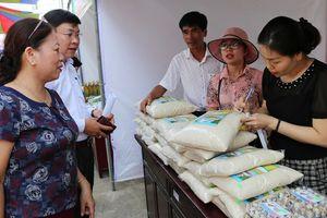 Nông dân sản xuất lúa sạch