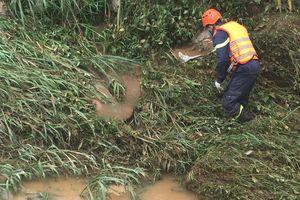 Tìm thấy thi thể nam thanh niên bị nước cuốn trôi ở Đà Lạt