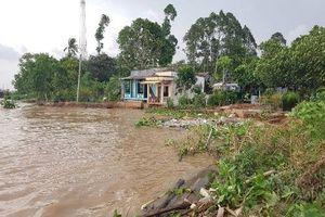 An Giang: Di dời 11 hộ dân khỏi vùng sạt lở