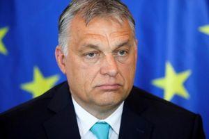 Thủ tướng Hungary nói không sợ bị EU kỷ luật