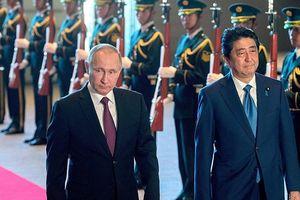 Tổng thống Putin đề xuất kí hiệp ước hòa bình, Nhật Bản thẳng thừng từ chối