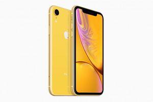 Trên tay iPhone Xr với 6 màu sắc, giá 749 USD đang được mong chờ nhất trong bộ 3 iPhone mới