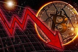 Thị trường tiền mật mã sẽ đi vào lịch sử thị trường tài chính thế giới, suy giảm còn hơn cả bong bóng Dot-com