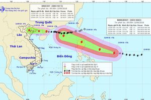 Siêu bão Mangkhut sẽ ảnh hưởng đến Việt Nam như thế nào?