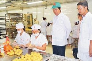 Lo ngại chất lượng bánh Trung thu nhập khẩu