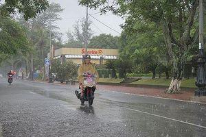 Cấm biển, tạm dừng hoạt động vui chơi giải trí để ứng phó bão