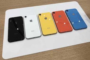 Clip trên tay iPhone XR - phiên bản giá rẻ mới nhất 2018