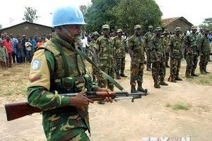 LHQ kêu gọi đóng góp binh sỹ, cảnh sát cho hoạt động gìn giữ hòa bình