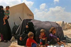 Liên hợp quốc kêu gọi phiến quân rời Idlib nhằm bảo vệ dân thường