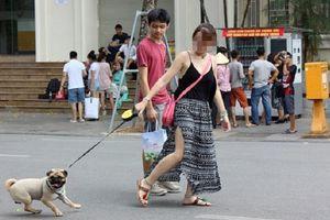 Cấm mang chó vào phố đi bộ hồ Gươm: 'Nhìn con chó nặng 20-30kg lù lù tiến đến ai mà chẳng sợ, cứ cẩn thận vẫn hơn'