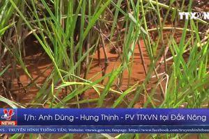 Nước rửa quặng alumin tại Đắk Nông không ảnh hưởng tới môi trường