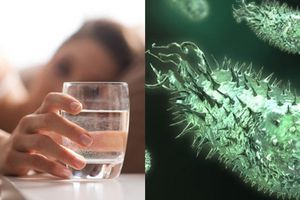 Buổi sáng thức dậy nên uống nước trước hay đánh răng trước?