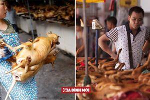 12 quốc gia ăn thịt chó trên thế giới