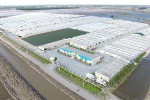 Công ty tôm giống số 1 Việt Nam nhận đầu tư 33 triệu USD