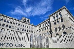 Trung Quốc đệ đơn muốn WTO trừng phạt Mỹ 7 tỷ USD mỗi năm