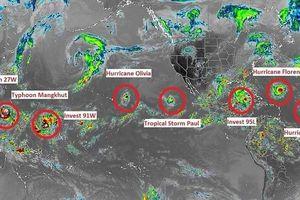 Ảnh, video: 9 cơn bão mạnh chết người cùng xuất hiện trên thế giới