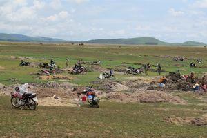 Dân Phú Yên đổ xô đi đào đá đen, người gặp may kiếm vài triệu đồng/ngày